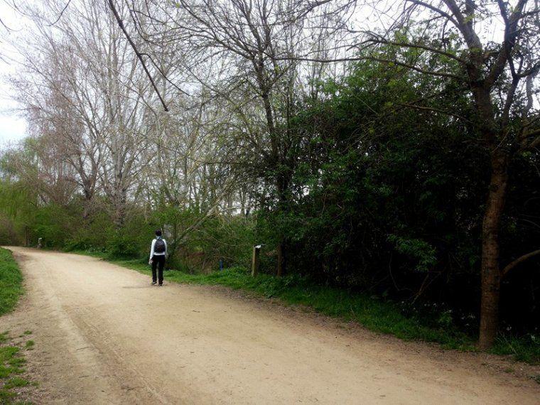 Tram del Parc de la Riera de Sant Cugat