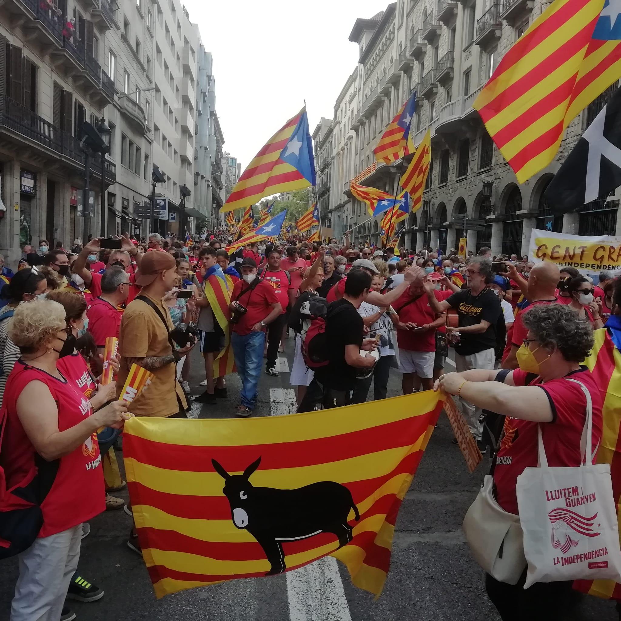 Manifestació de Barcelona a la tarda. FOTO: Cedida